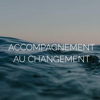 Accompagnement au changement