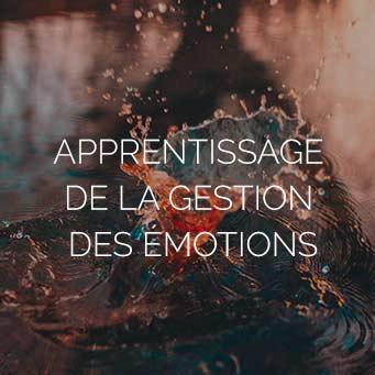 Apprentissage de la gestion des émotions